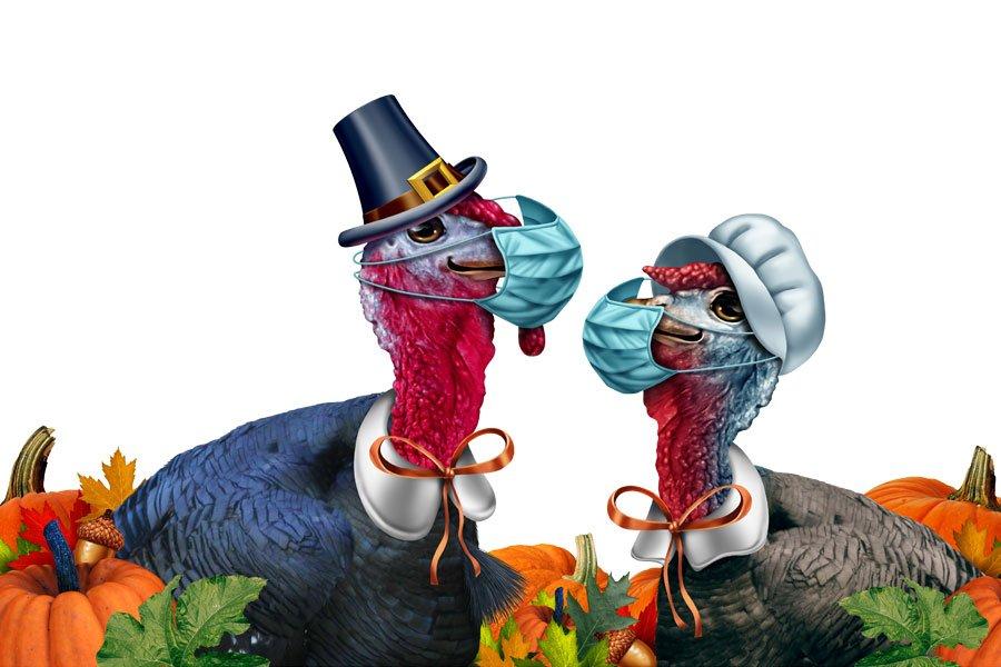 Turkeys with Masks
